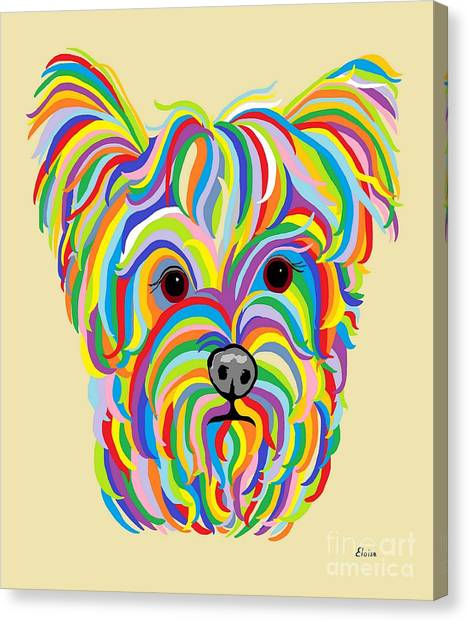 Yorkshire Terrier ... Yorkie Canvas Print