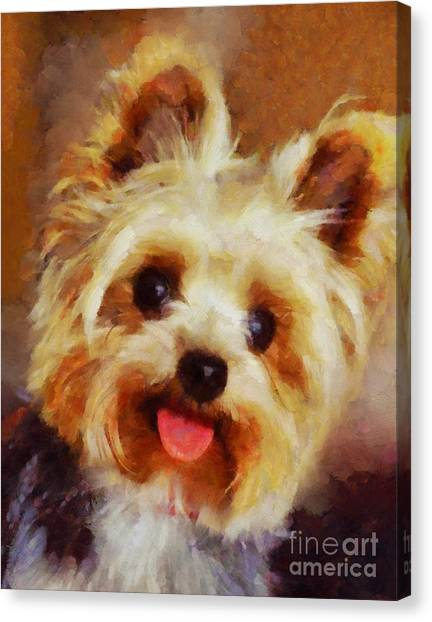 Yorkshire Terriers Canvas Print - Yorkshire Terrier by Esoterica Art Agency