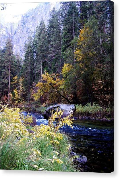 Yosemite 1 Canvas Print by Vijay Sharon Govender