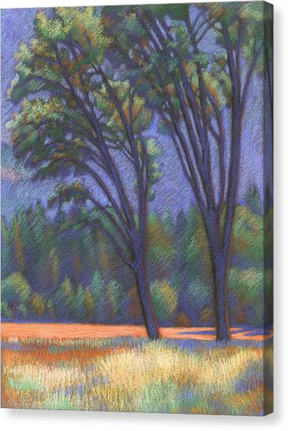 Yosemite Trees Canvas Print