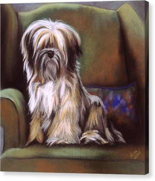 Canvas Print - You Are In My Spot Again by Barbara Keith