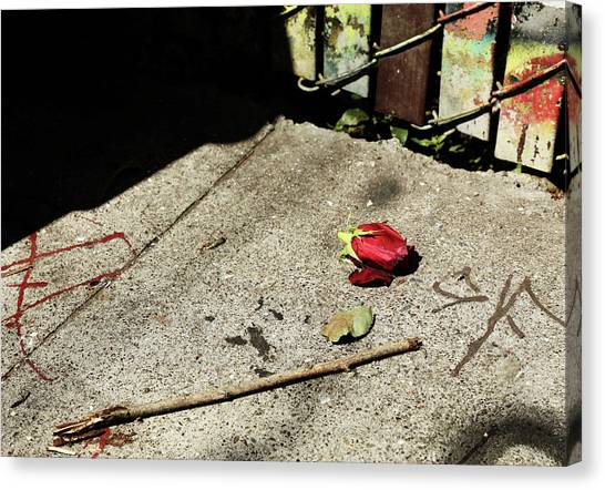 Canvas Print - You Broke Our Rose by The Artist Project