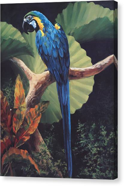 Macaws Canvas Print - You Don't Say by Laurie Hein