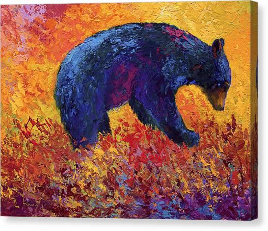 Black Bears Canvas Print - Young Adventuror by Marion Rose