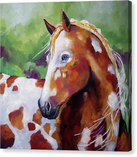 Canvas Print - Young Appaloosa by Laurie Pace