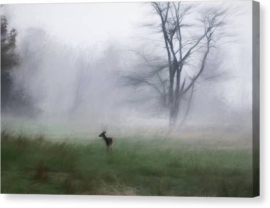 Young Deer And Tree Canvas Print
