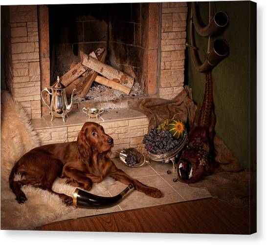 Canvas Print - Young Irish Setter by Tanya Kozlovsky