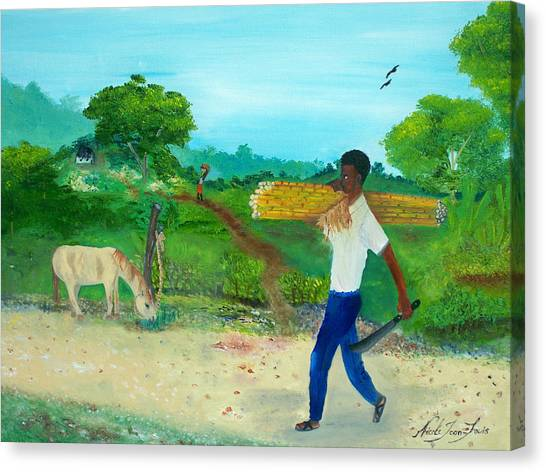 Young Man Carrying Sugarcane Canvas Print