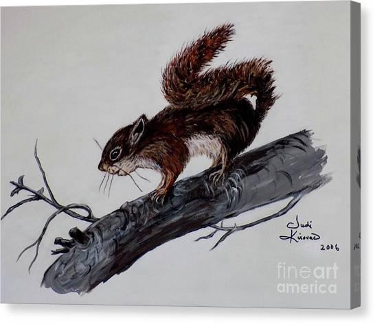 Young Squirrel Canvas Print