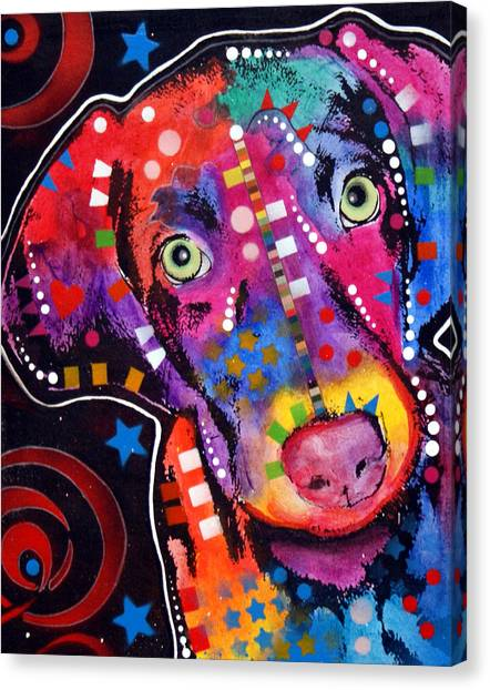 Weimaraners Canvas Print - Young Weimaraner by Dean Russo Art