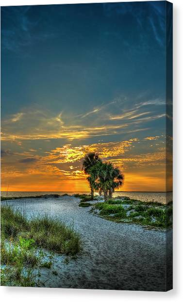 Palm Trees Sunsets Canvas Print - Your One A Day by Marvin Spates