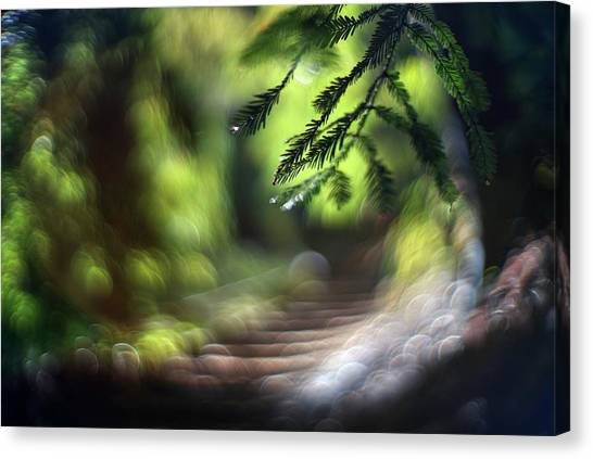Canvas Print featuring the photograph Your Stairway Lies On The Whispering Wind by Quality HDR Photography