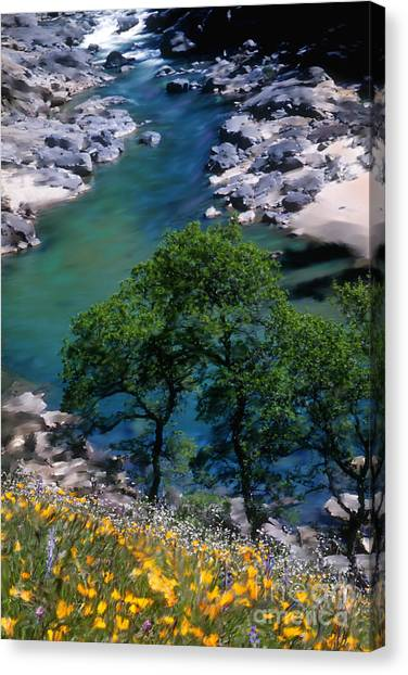Yuba River In Spring Canvas Print