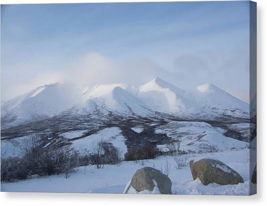 Canvas Print featuring the photograph Yukon Snow Scene Mystic by Phyllis Spoor