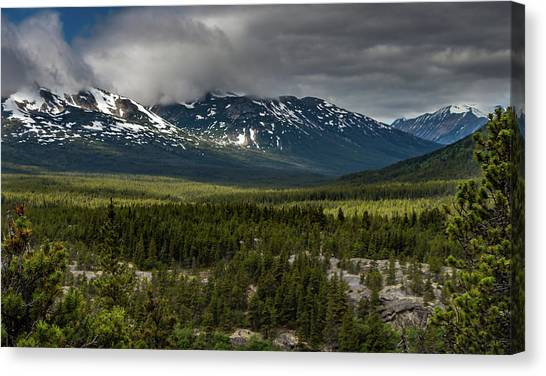Yukon Wilderness Canvas Print