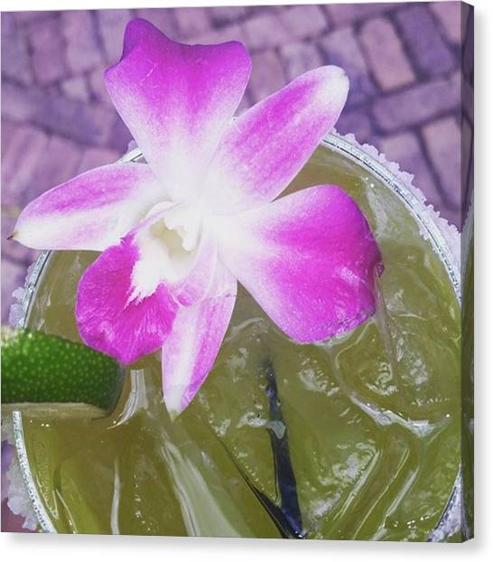 Limes Canvas Print - Spring Cocktail by Danielle Recoder