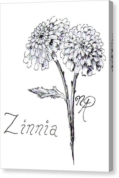 Zannie Zinnia Canvas Print