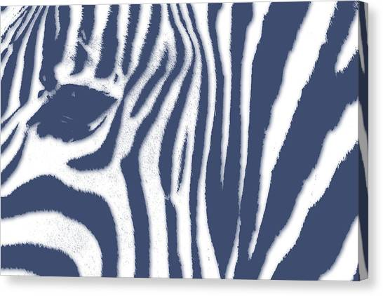 Mount Kilimanjaro Canvas Print - Zebra 2 by Joe Hamilton