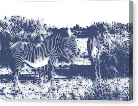Mount Kilimanjaro Canvas Print - Zebra 4 by Joe Hamilton