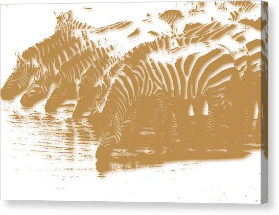 Mount Kilimanjaro Canvas Print - Zebra 5 by Joe Hamilton