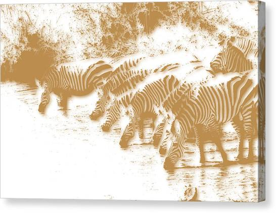 Mount Kilimanjaro Canvas Print - Zebra 6 by Joe Hamilton