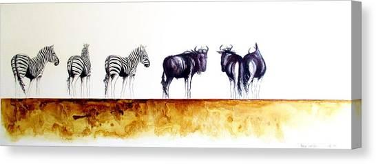Zebra And Wildebeest Canvas Print