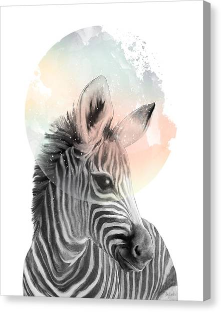 Zebras Canvas Print - Zebra // Dreaming by Amy Hamilton