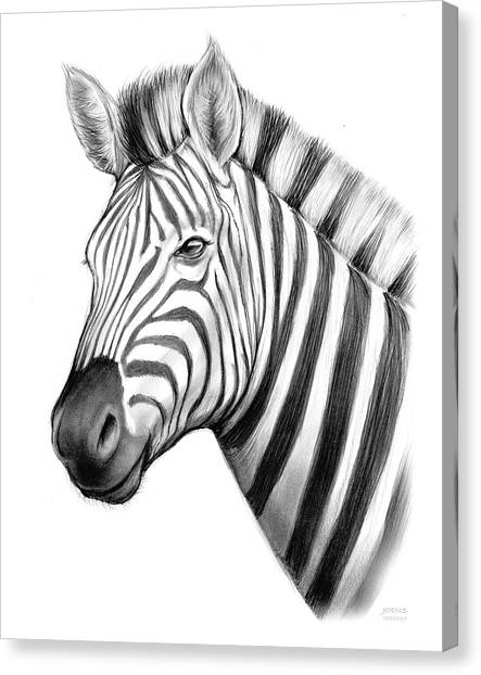 Pencils Canvas Print - Zebra by Greg Joens