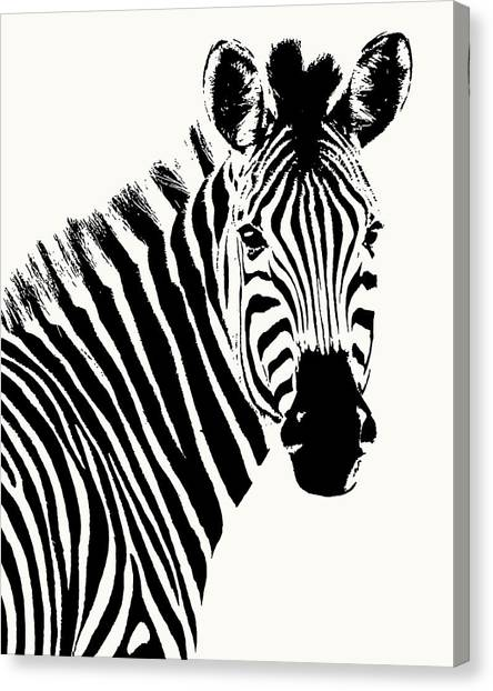 Zebra In Graphic Black And White Canvas Print