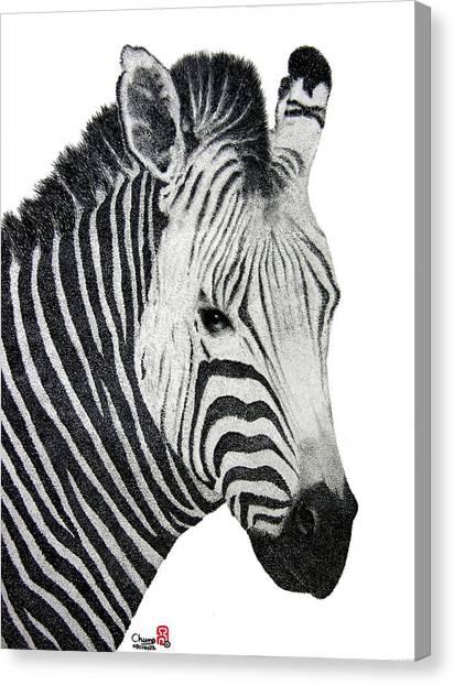 Zebra Canvas Print by Joung Sik Chun