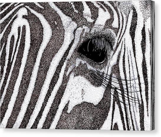 Zebra Portrait Canvas Print by Karl Addison