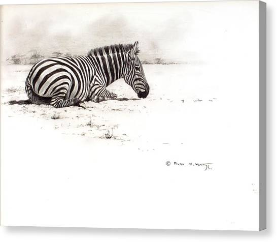 Canvas Print featuring the painting Zebra Sketch by Alan M Hunt