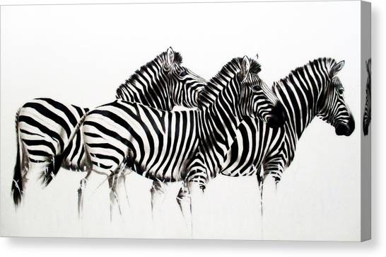Zebras - Black And White Canvas Print