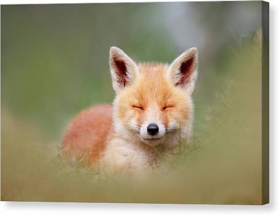 Camouflage Canvas Print - Zen Fox Series- Happy Baby Fox by Roeselien Raimond