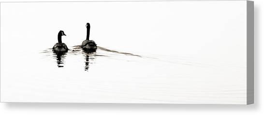Zen Geese Canvas Print