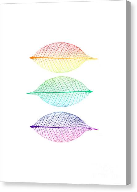 Rainbows Canvas Print - Zen Leaves by Delphimages Photo Creations