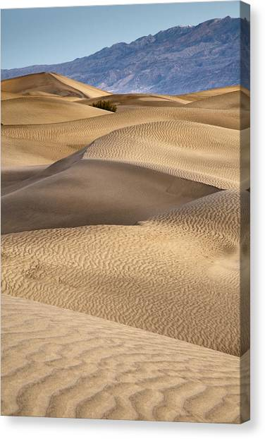 Zig Zag Canvas Print by Mike McMurray