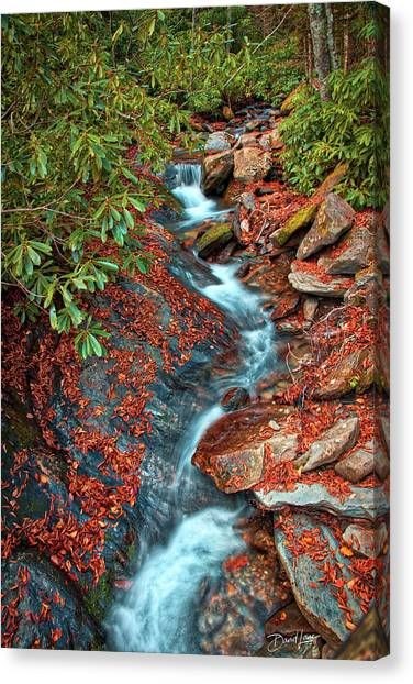 Canvas Print featuring the photograph Zig Zag Mountain Stream by David A Lane
