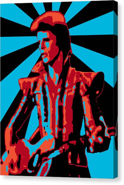 Ziggy Played Guitar Canvas Print