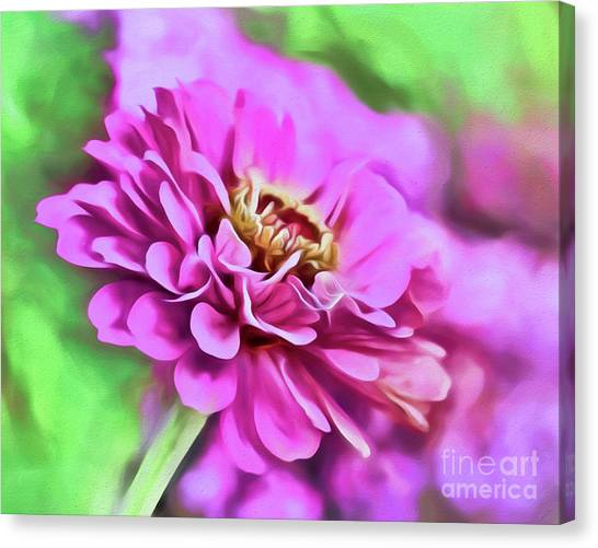 Zinnia Art 2 Canvas Print