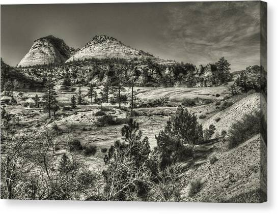 Zion National Park Along Rt 9 Canvas Print