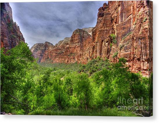 Zion View Of Valley With Trees Canvas Print