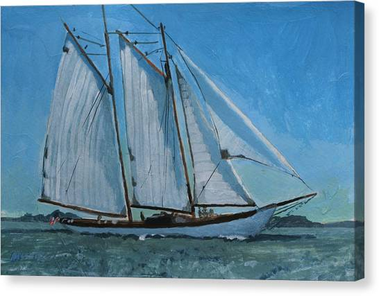 Zodiac Under Way Canvas Print by Robert Bissett