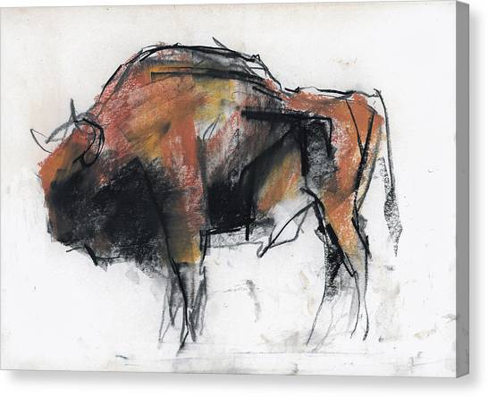 Bison Canvas Print - Zubre  Bialowieza by Mark Adlington