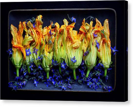 Zucchini Flowers Canvas Print