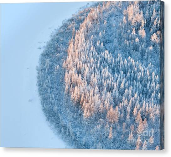 Hoarfrost Canvas Print - Aerial View Of Forest River In Time Of by Vladimir Melnikov