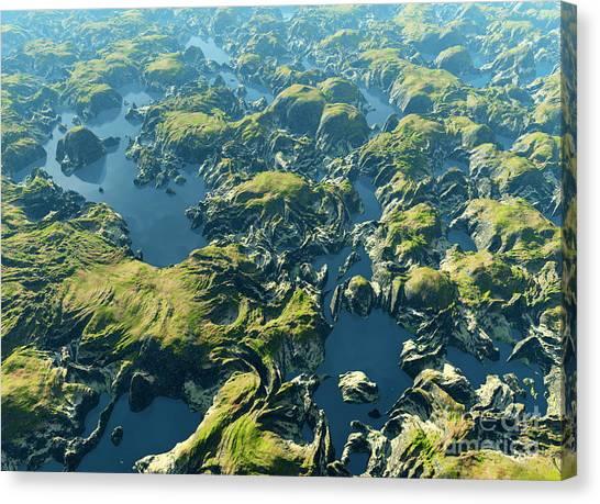 South American Canvas Print - Amazon River Birds Eye View by Dariush M