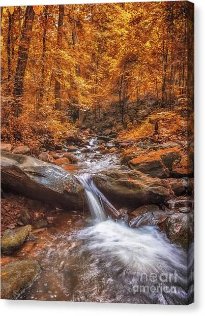 Amicalola Falls Canvas Print