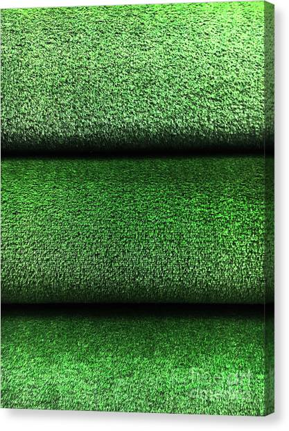Canvas Print - Artifical Grass Rolls  by Tom Gowanlock