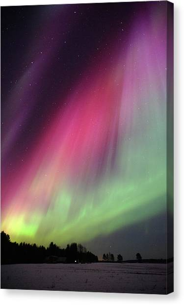 Aurora Borealis Canvas Print by Eerik